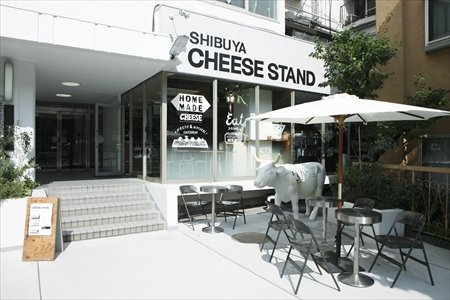 CHEESE STAND