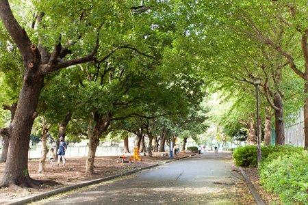 東京都立赤塚公園 城址地区