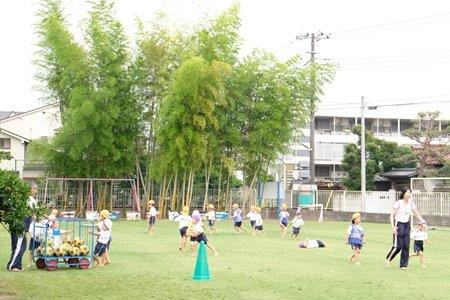 田無いづみ幼稚園 インタビュー スポーツ