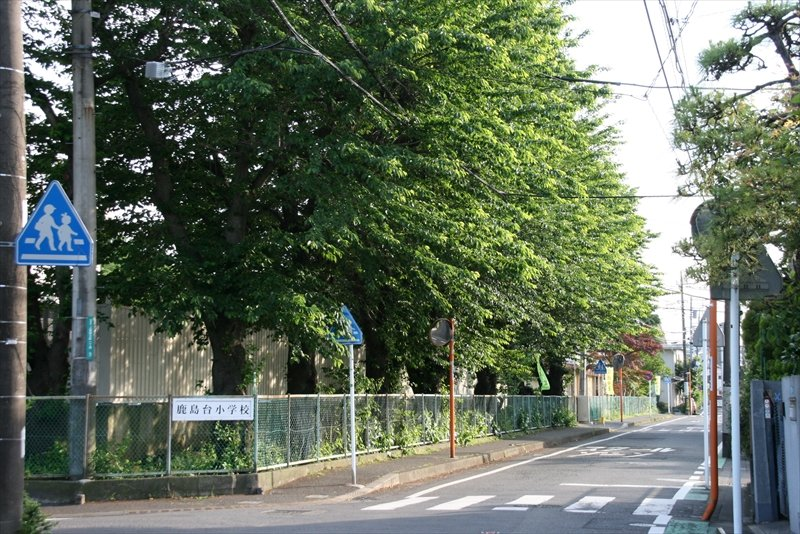 学校前、落ち着いた住宅街が広がっている