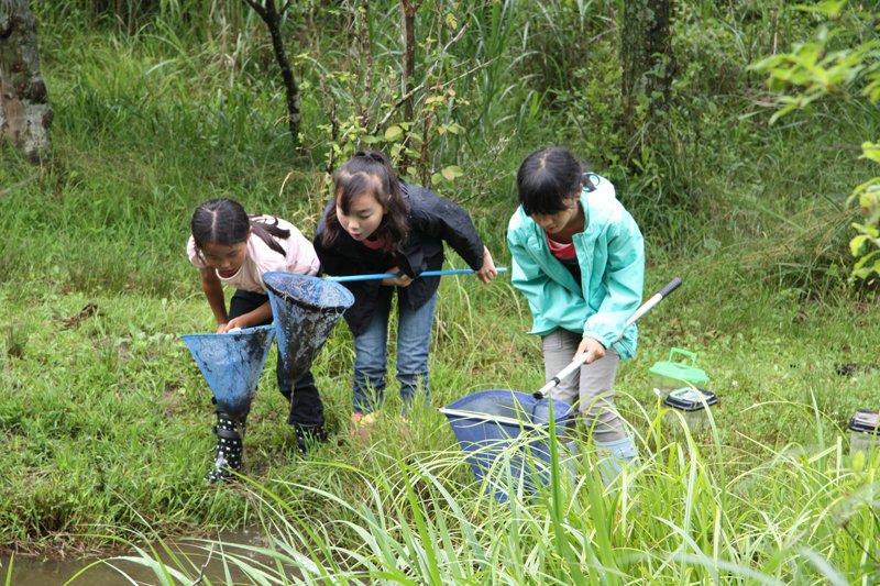 自然体験や農業体験のプログラムも用意