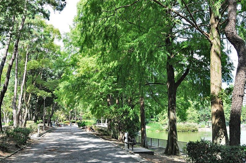 「千里南公園」