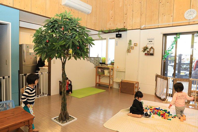 保育室にある大きな木が印象的