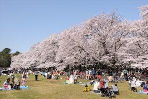 今月の注目!「武蔵小金井LIFE」