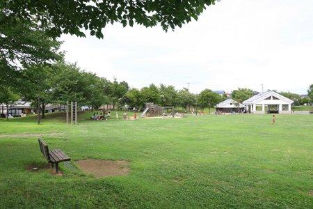 野田山崎公園(みずき公園)