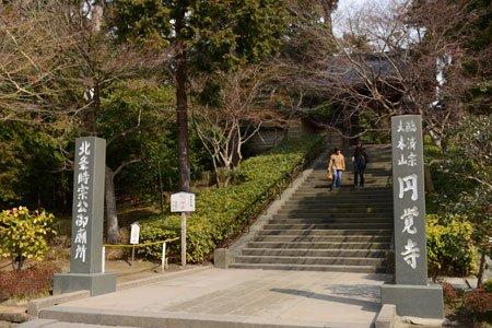 北鎌倉を代表する古刹/大本山円覚寺 宗務部員 竹林士哲さん