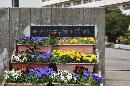 船橋市立坪井小学校 正門