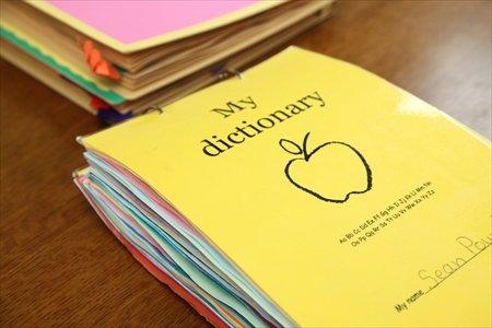 SIS My Dictionary 完成