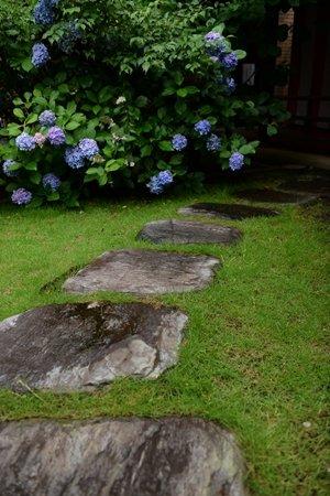 桜神宮 境内