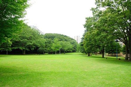 村上中央公園