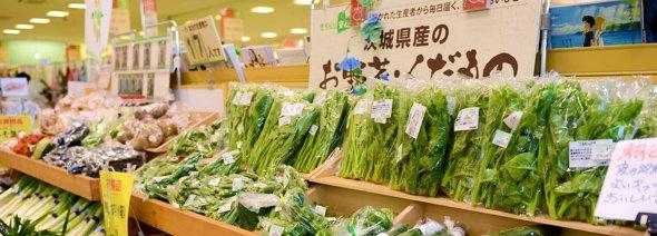 地域の方々から愛されるお店づくりを/ヨークベニマル つくば竹園店 マスター店長 堀越康弘さん