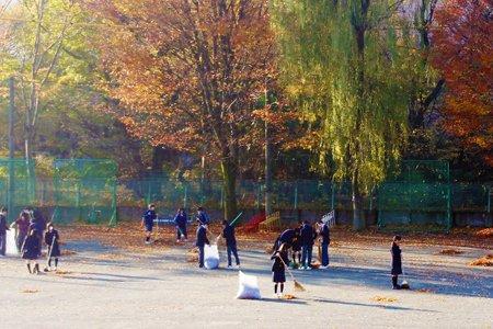 小平市立小平第四中学校:落ち葉掃きボランティア