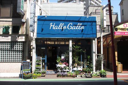 """街の""""カッコいい花屋さん""""を目指して/Hallo Gallo(ハローガロー)オーナー 成瀬拓也 さん"""