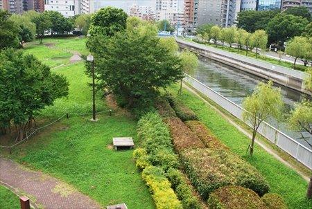 木場公園 川沿い