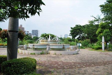 167686_DSC_0175toshiryokkasyokubutsuen_R