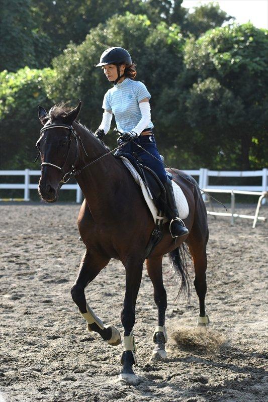 乗馬を練習する参加者