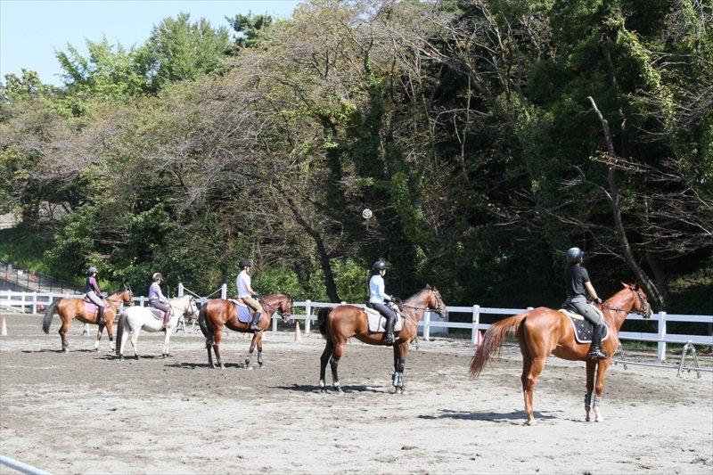 乗馬の練習風景
