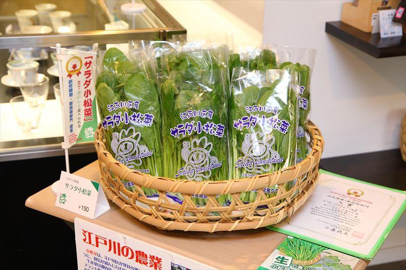 生でも食べられる「サラダ小松菜」