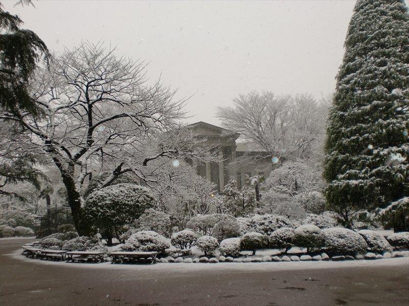 雪の日の青山学院
