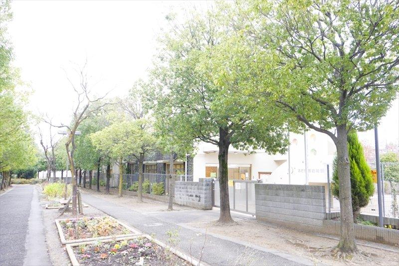 園の前の並木道