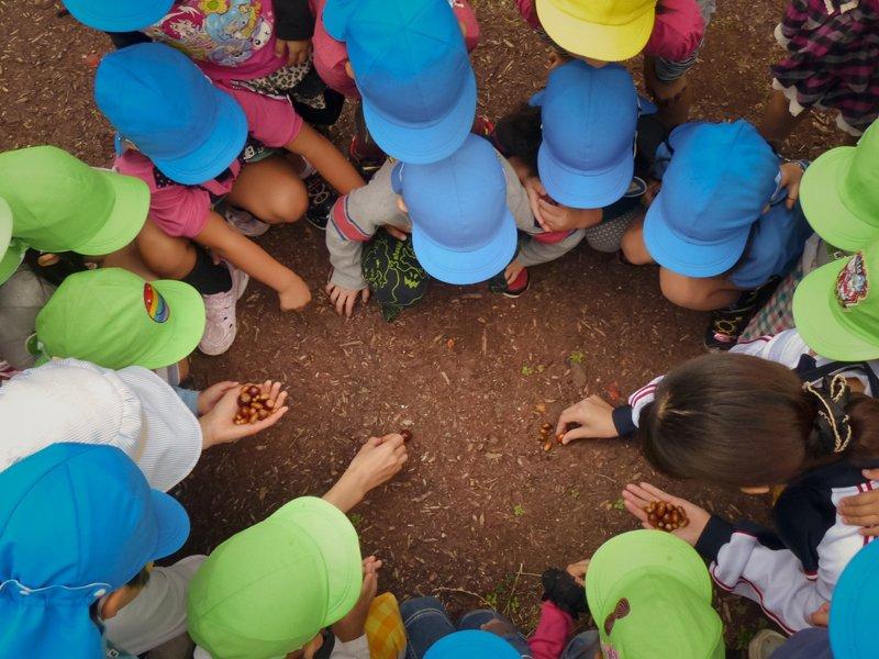 自然や環境に関する教育指導も行う