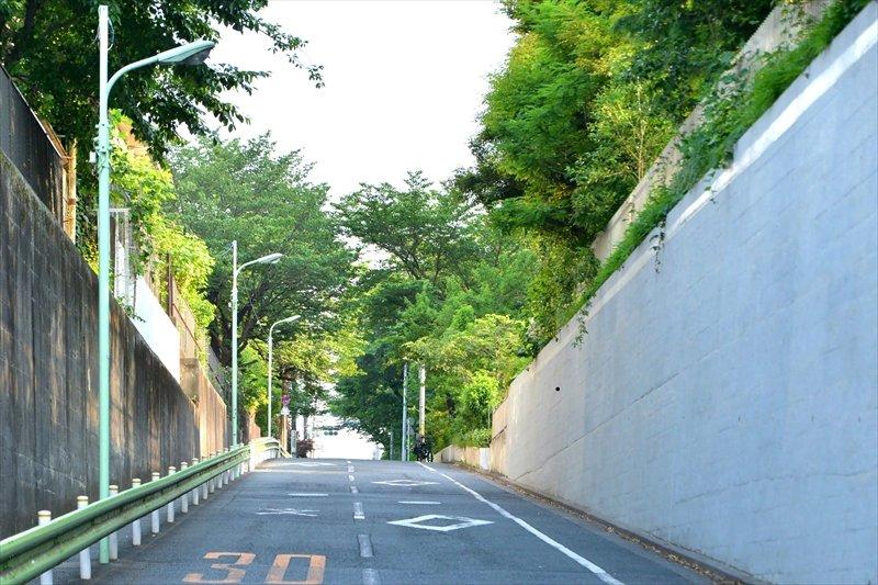 向いの都立雪谷高校との間にある通学路。桜の木が生い茂る静かな環境