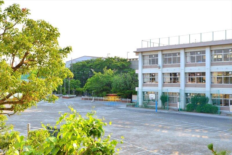 学校外観。校庭にはたくさんの種類の木々が茂る