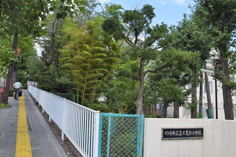 校門周辺も緑が豊か