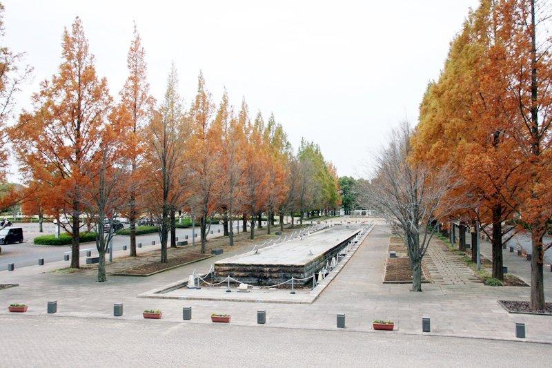 浦和美園エリアの憩いの場となっている