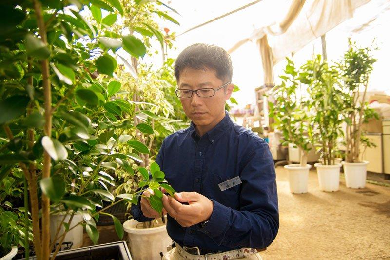 1級室内園芸装飾技能士の資格を持つ長島さん
