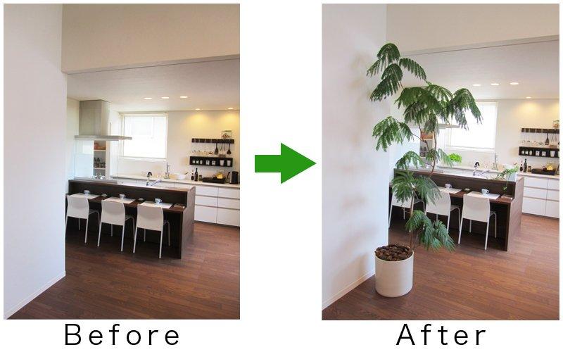 植物の有無で視覚的な効果も