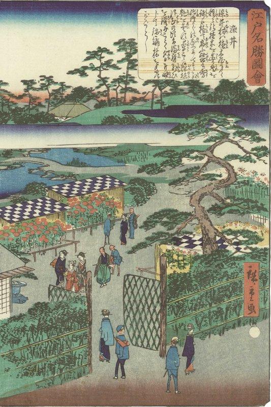 歌川広重画「江戸名勝図会 染井 1861(文久元)年」には、植木屋で花を愛でる庶民の様子が描かれている