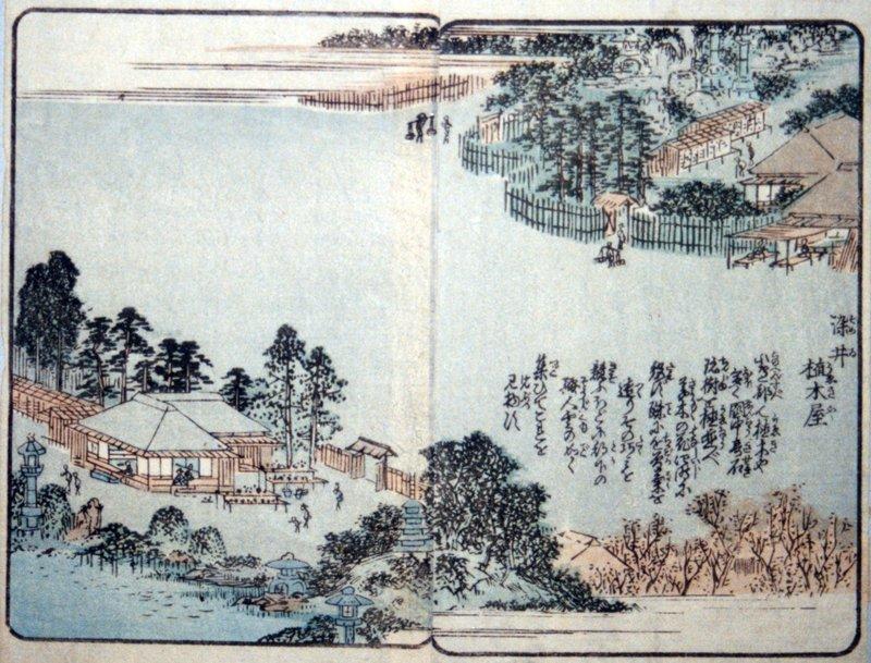 江戸の景勝地を紹介している「絵本江戸土産」で染井の植木屋が描かれている