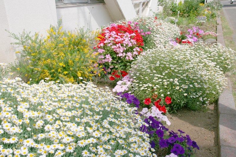 地域の人たちによる花壇