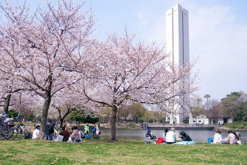 「日本の歴史公園100選」に入選した「大仙公園」