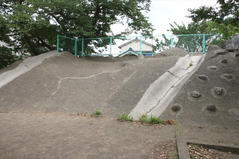 本町小学校の特色体育山