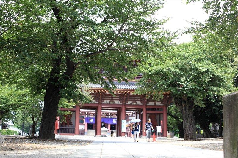 「池上本門寺」など自然豊かな文化・歴史施設が身近に