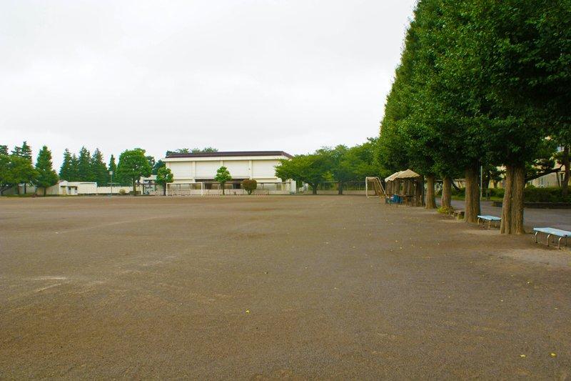 練馬区で最も広い校庭