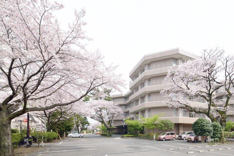 桜が美しい「東芝林間病院」