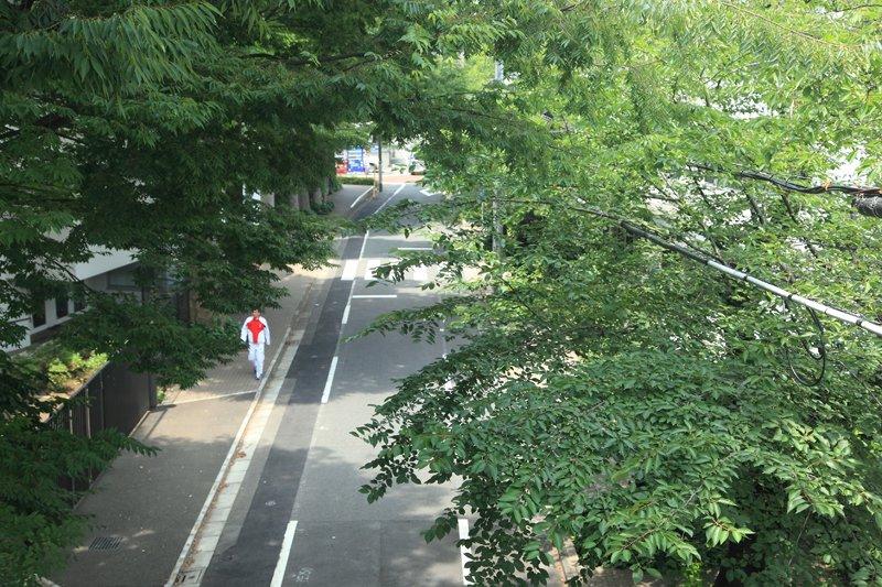 学校周辺の街並み