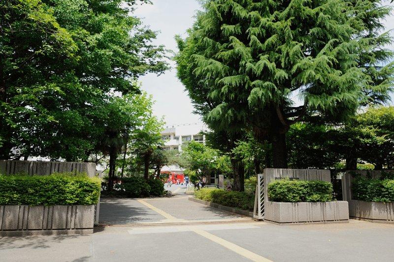 緑豊かな校舎の入口
