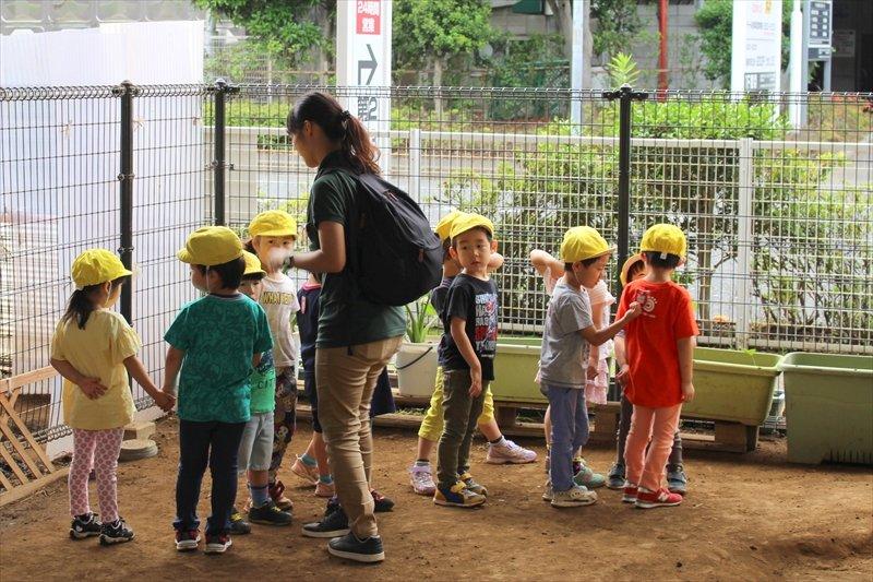 老人ホームに行くため整列する4才児クラス