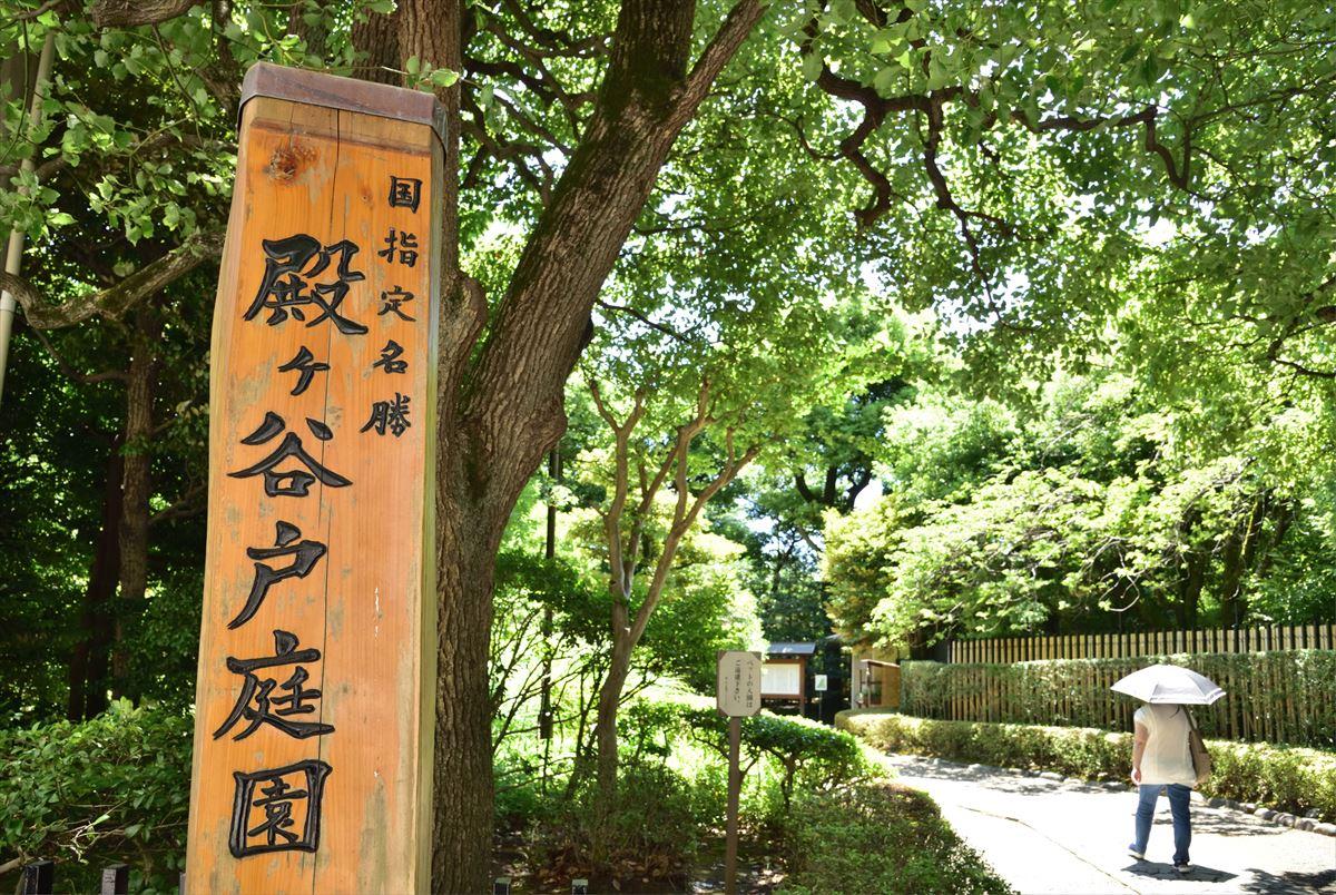 緑豊かな名勝「殿ヶ谷戸庭園」