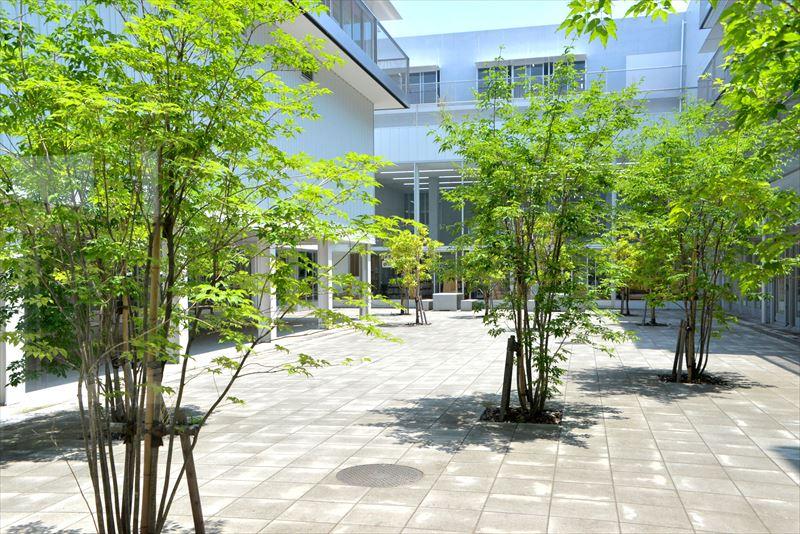 いつか誇りに思える「横浜市立子安小学校」での時間/横浜市立子安小学校