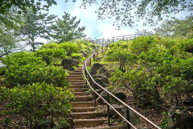 「戸山公園」内にある箱根山